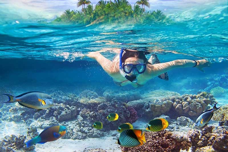 What is to do in Maldives Vacations?