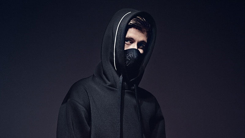 alan walker net worth