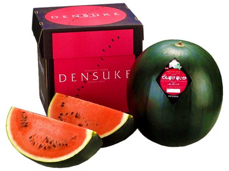 most expensive fruits: densuke watermelon