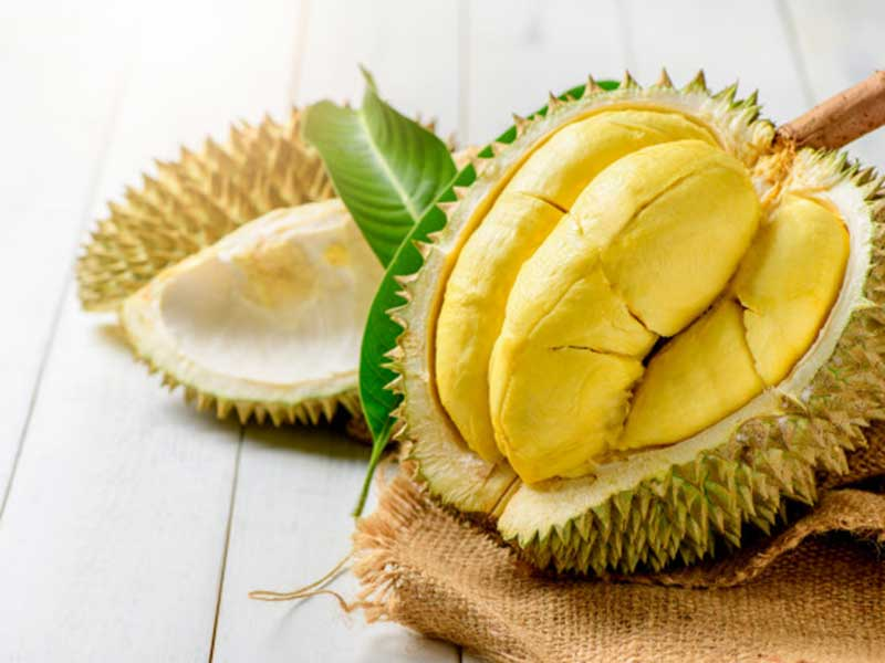 most expensive fruits in the world: durian